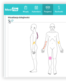 program-dla-fizjoterapeuty-medfile.png